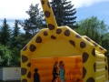 giraffe8