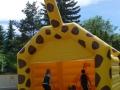 giraffe9